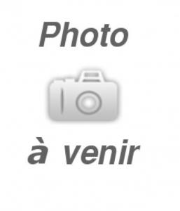 ENSEMBLE DE FREIN AVEC AJUSTEUR AUTOMATIQUE 10 x 2.25″ ÉLECTRIQUE CÔTÉ GAUCHE 3500 lbs DEXTER