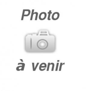 ENSEMBLE DE FREIN AVEC AJUSTEUR AUTOMATIQUE 12 x 2″ ÉLECTRIQUE CÔTÉ GAUCHE 6000 lbs DEXTER